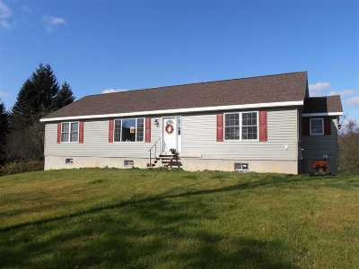 Albany County Single Family Home For Sale: 450 Long Rd