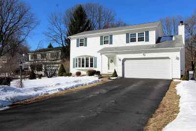 Albany County Single Family Home New: 3 Ann Lee Ct