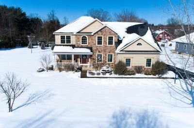 Clifton Park Single Family Home New: 4 Bridgewater Ct