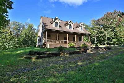 Rensselaer County Single Family Home For Sale: 28 Lower Bower Rd