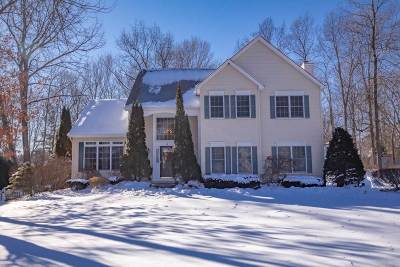 Clifton Park Single Family Home For Sale: 4 Primer Ct