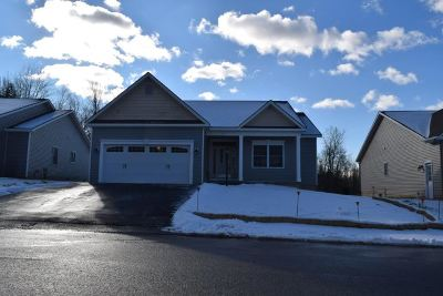 Mechanicville, Stillwater Single Family Home For Sale: 47 Lakepointe Way