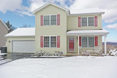 Troy Single Family Home For Sale: 7 Clearview Dr