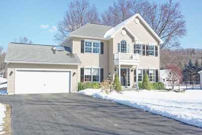 Colonie Single Family Home For Sale: 85 Dunsbach Ferry Rd
