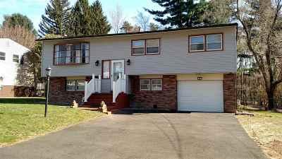Colonie Single Family Home For Sale: 12 Apple Blossom La