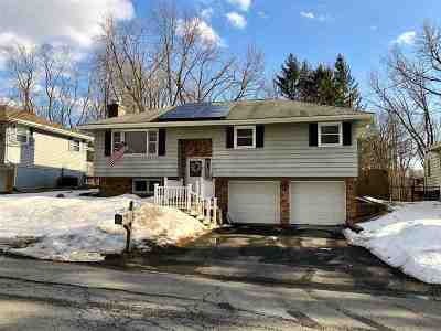 East Greenbush Single Family Home For Sale: 20 Chestnut Ct