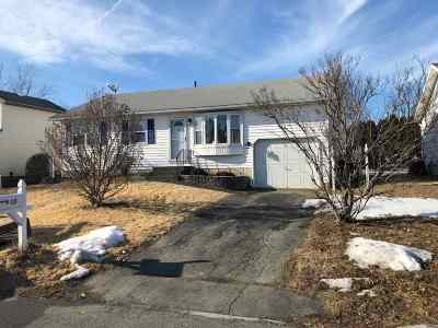 Troy Single Family Home For Sale: 17 Patricia Dr