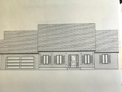 Albany County Single Family Home For Sale: 799 Delaware Av