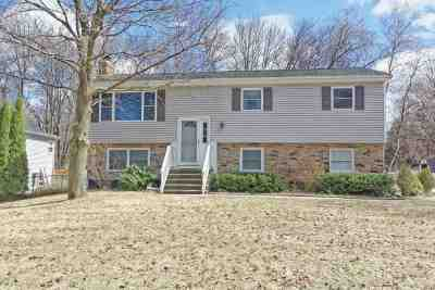 Clifton Park Single Family Home New: 2 Briarfield Dr