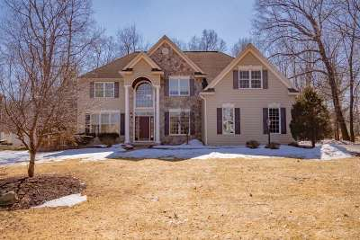 Clifton Park Single Family Home New: 88 Ave Of The Oaks