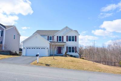 Colonie Single Family Home New: 10 Summerton Pl