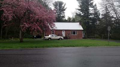 Greene County Single Family Home For Sale: 1562 County Route 54