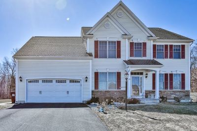 Single Family Home For Sale: 24 Misty Meadow Way