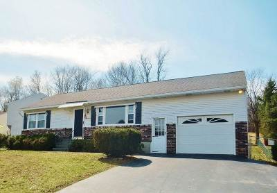 East Greenbush Single Family Home Active-Under Contract: 16 Celeste Dr