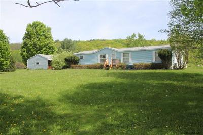 Schoharie County Single Family Home For Sale: 413 State Route 7