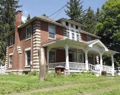 Washington County Single Family Home For Sale: 5035 County Rt 113
