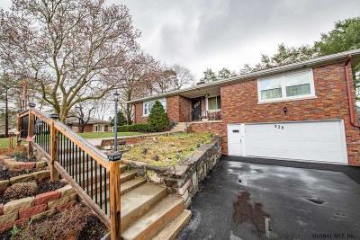 Albany Single Family Home For Sale: 338 South Main Av