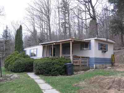 Schoharie County Single Family Home For Sale: 111 Myers Rd