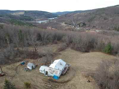 Schoharie County Single Family Home For Sale: 212 New Bridge Rd