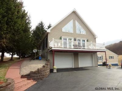 Washington County Single Family Home For Sale: 322 County Rt 28