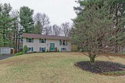 Clifton Park Single Family Home New: 6 Pine Tree Pl