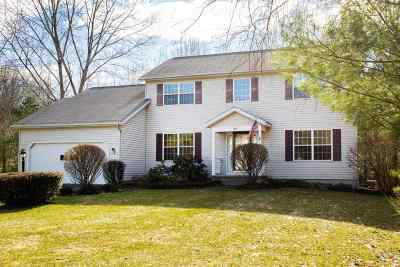 Albany County, Columbia County, Greene County, Fulton County, Montgomery County, Rensselaer County, Saratoga County, Schenectady County, Schoharie County, Warren County, Washington County Single Family Home New: 208 Drummond Dr