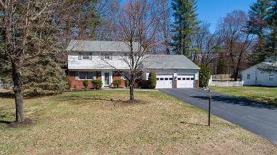 Clifton Park Single Family Home New: 17 Southwood Dr