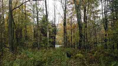 Johnstown Residential Lots & Land For Sale: 4601 State Route 29