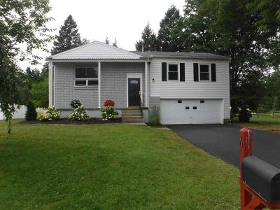 Colonie Single Family Home For Sale: 6 Compen Pl