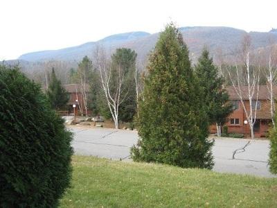 Johnsburg Single Family Home For Sale: 13e Freebern Rd