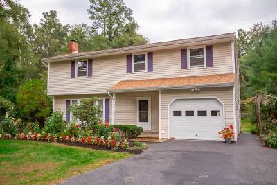 Guilderland Single Family Home New: 3677 East Lydius St