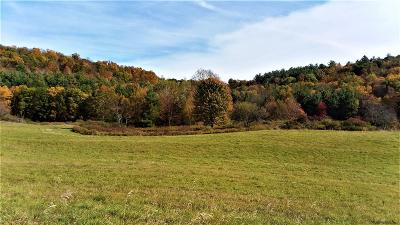 Washington County Residential Lots & Land For Sale: Washington County Route 64