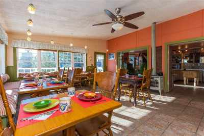 Saratoga County Single Family Home For Sale: 41/41a Locust Grove Rd