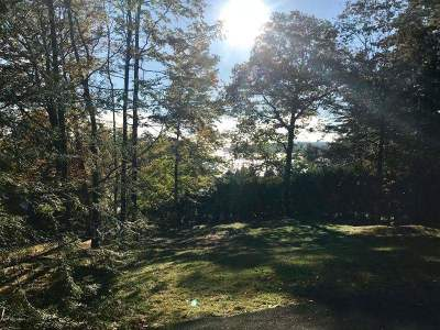 Lake George Residential Lots & Land For Sale: Green Harbour La