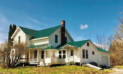 Hamilton County Single Family Home For Sale: 6163 Route 28