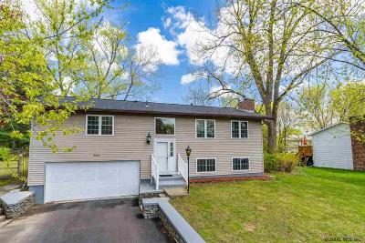 Colonie Single Family Home For Sale: 19 Dan Del Dr
