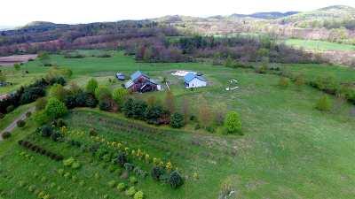Washington County Single Family Home For Sale: 867 County Rt 52