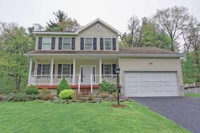 Albany County Single Family Home For Sale: 28 Waterford Av
