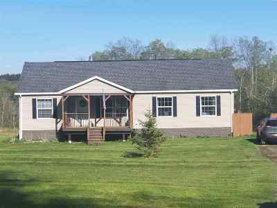 Albany County Single Family Home For Sale: 54 Willsey Rd