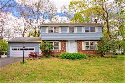 Schenectady County Single Family Home For Sale: 956 Douglas Ct