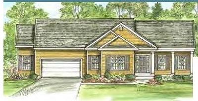 Saratoga County Single Family Home New: 2 Garnet Mine Ct