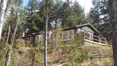 Johnsburg Single Family Home For Sale: 1306 Garnet Lake Rd