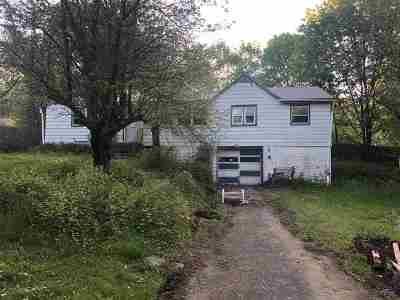 Albany County Single Family Home New: 133 County Route 312