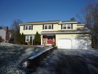 Schenectady County Single Family Home New: 11 Valleywood Dr