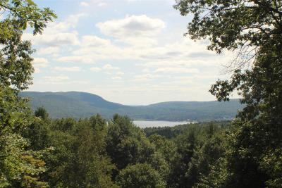 Lake George Tov NY Single Family Home New: $629,000