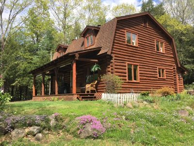 Lake George Single Family Home For Sale: 86 Wall St