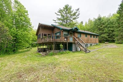 Horicon Single Family Home New: 167 Grassville Rd