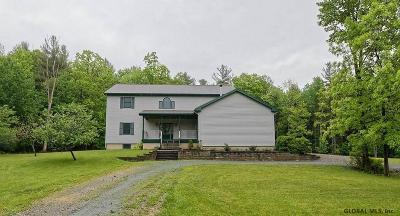 Single Family Home 48hr Contingency: 248 Millers Corners Rd