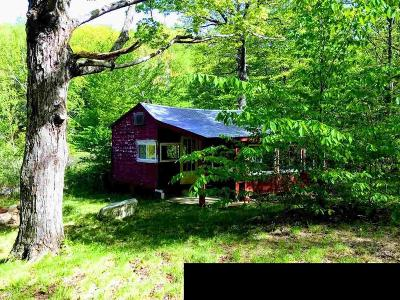Greenfield, Corinth, Corinth Tov Single Family Home For Sale: 383 Lake Desolation Rd