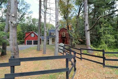 Saratoga Springs Single Family Home For Sale: 91 Meadowbrook Rd